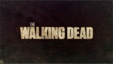 The Walking Dead (TV Show) Class of 2014 (Wild Card)