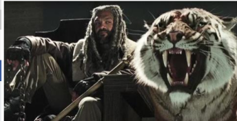 walkingdeadtiger