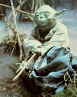 Yoda Class of 2012 (Wild Card)