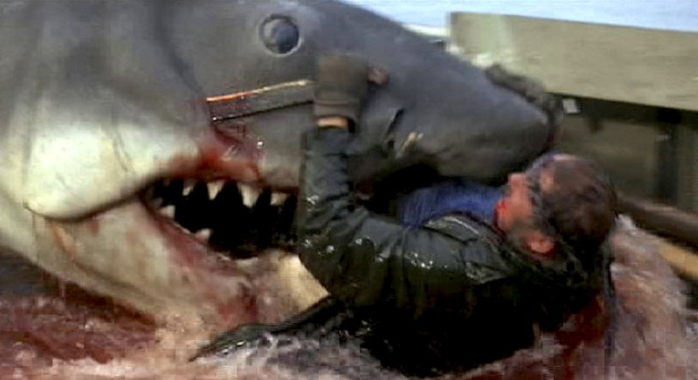 Resurrecting Quint: Robert Shaw's son on bringing the Jaws legend back to  life — THE DAILY JAWS